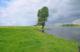 Bergsche Maas, Netherlands