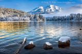 Happy New Year Mount Shasta