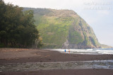 _ADR4250 waipio valley beach w.JPG