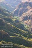 _ADR6257 wamea canyon aerial w.jpg