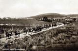 Traws War Horses