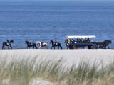 Terschelling strand - Terschelling beach