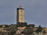 Terschelling Lighthouse Brandaris