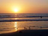 sea-sunset.in Imperial Beach