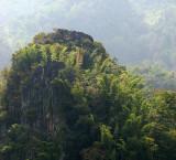 bamboo limestone outcrop