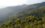 Doi Pui view