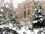 NYU Law School Residence Hall
