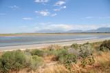 Great Salt Lake Antelope Island, Utah