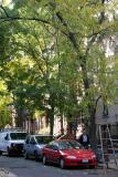 Northwest View from Bleecker Street