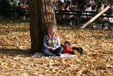 Meditating Under an Elm Tree
