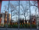 NYU Main Building Window Reflections & Torch Flowers