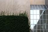 Metropolitan Museum of Art, Ivy Wall & Window Reflections