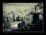 Aoyama Cemetery,Tokyo