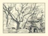 Kyu-Iwasaki-tei Gardens,Ueno