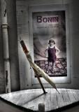 Bonin foto exhibition at La Flotte