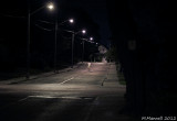 Lonely Zombie