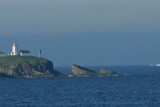 DSC06025F Newfoundland.jpg