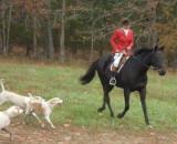 Hunting at Cedar Valley Farm Nov. 5th