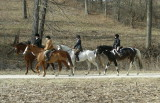 Hunting Saturday January 26th - Steckel Farm