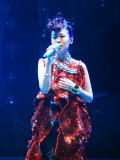 Lily Chan Concert 2007