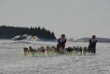 Three Forts Sled Dog Race, Fort Chipewyan