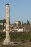 Selcuk Artemis Temple March 2011 3456.jpg