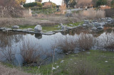 Selcuk Artemis Temple March 2011 3476.jpg