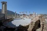 Ephesus March 2011 3600.jpg