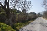 Ephesus March 2011 3500.jpg