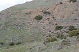 Hierapolis March 2011 4984.jpg