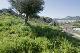 Xanthos March 2011 5135.jpg