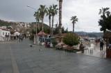 Kash March 2011 6047.jpg