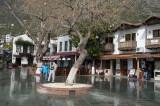 Kash March 2011 6057.jpg
