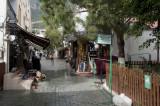 Kash March 2011 6062.jpg