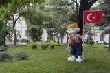 Ankara june 2011 6688.jpg