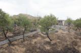 Nevsehir september 2011 9872.jpg