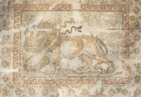 Antakya Museum December 2011 2505.jpg