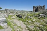 Aspendos march 2012 4690.jpg