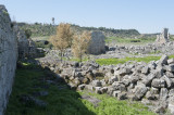 Perge march 2012 3826.jpg