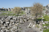 Perge march 2012 3829.jpg