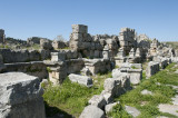 Perge march 2012 3843.jpg