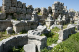 Perge march 2012 3844.jpg