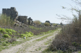 Perge march 2012 3929.jpg