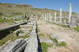 Perge march 2012 3940.jpg