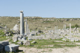 Perge march 2012 3985.jpg