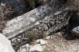 Termessos march 2012 3686.jpg