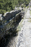Lyrbe march 2012 4413.jpg