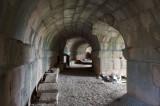 Limyra march 2012 5105.jpg