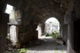 Limyra march 2012 5106.jpg
