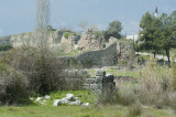 Limyra march 2012 5162.jpg
